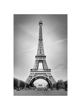 Πίνακας Πύργος του Άιφελ 60x90 εκ Χρώμα Λευκό Μαύρο. W-8673A