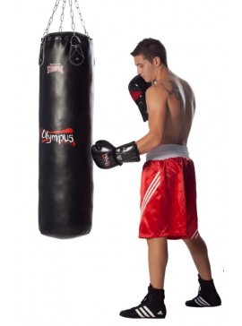 PUNCHING BAG OLYMPUS HI-TECH PVC 120 X 35CM  4080341