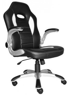 Καρέκλα Gaming PH6500   Κωδ  16331319  Mήκος  60.00  Βάθος  70.00  Ύψος  113.00